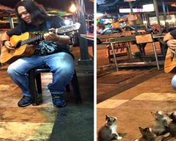 Street Performer Has No Audience Until Some Four-Legged Fans Arrive