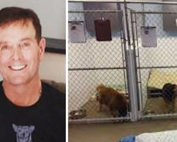 He Goes To Shelters And Asks For The Dogs No One Else Wants. This Is Who They Gave Him.
