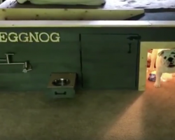 Eggnog The Bulldog Just Might Have The Best Doghouse Ever