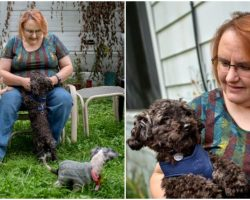 Woman Turns Her Home Into A Sanctuary, Takes In Over 200 Dogs