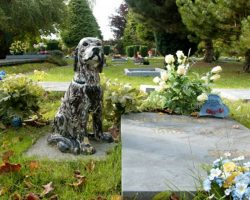 New State Law Allows Pets To Be Buried Alongside Their Humans At Cemeteries
