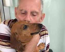 Man's Heart Breaks Giving Up His Dog Until New Owner Shows Compassion