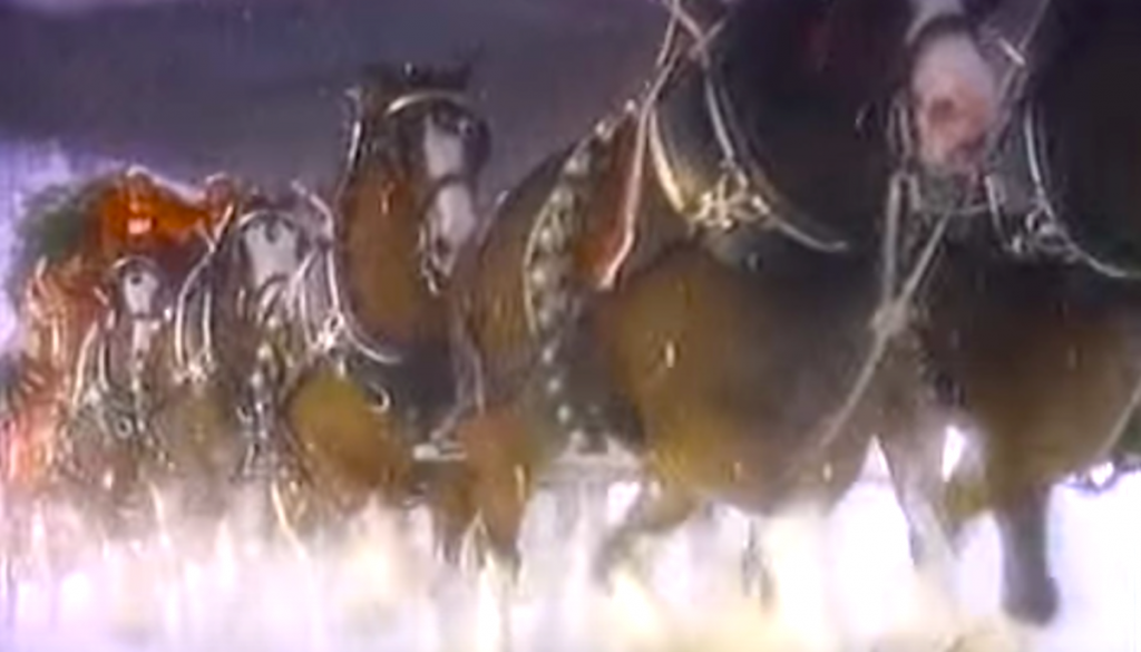 Clydesdale Christmas Tv Clip From 1987 Will Provide The Holiday Magic You Need