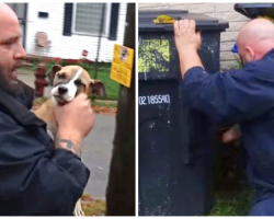 While Rescuing An Abandoned Puppy, Rescuer Finds More Than What He's Looking For