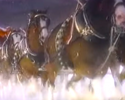 1987 Clydesdale Christmas TV Clip Will Put You In The Holiday Spirit
