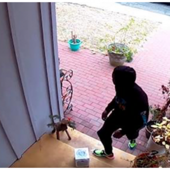 "Man Builds ""Glitter Fart Bombs"" That Explode On Package Thieves"