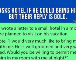 Man Asks Hotel If He Could Bring His Pet. But Their Reply Is Gold