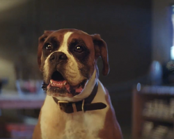 This Christmas advert is the only one you need to see this year