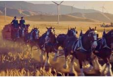 Budweiser's 2019 Super Bowl Ad- Starring Famous Clydesdales, A Dog, And The Wind