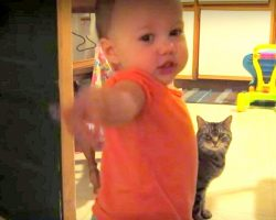 Cat and Baby Have Deep Meaningful Chats, Dad Captures Their Sweet Bond On Camera