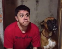 Man imitates his dog's every move but how his dog responds Is hilarious
