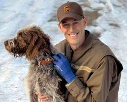 UPS Driver Hears Cries Of A Dog During A Delivery, Jumps Into Icy Pond To Save Her