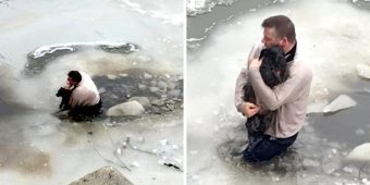Man Sees Terrified Dog Stuck In Frozen Waters, Risks His Life & Jumps Right In