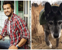 Luke Bryan Sees 18-Yr-Old Dog Who Needs Forever Home, Instantly Fell In Love