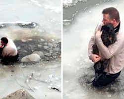 Man Sees Terrified Dog Stuck In Frozen Waters, Risked His Life And Jumped Right In