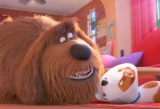 'The Secret Life Of Pets 2' Trailer Is Out, And It's Going To Be A Laugh Riot