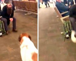 Soldier Returns From Duty Looking Unrecognizable, But Can't Fool His Dog's Nose