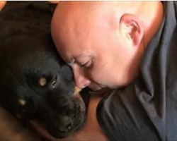 Rottweiler With Cancer Happy Right Until The End Thanks To Family's Bucket List