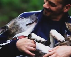 Nobody Wanted This Old Shelter Dog Until This Man Showed Up