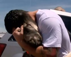 Soldier saves a puppy but has to leave Iraq, knows just what to do instead