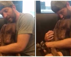 Country Superstar Cradles His Dog, Sings Him Peacefully To Sleep