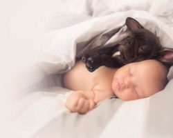 French Bulldog and Baby born on the same day are inseparable!