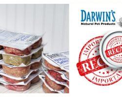 FDA Warns: Do Not Feed These 3 Lots Of Darwin's Natural Dog Food