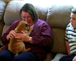 Grandma Can't Stop Crying When She Gets The Best Present Ever For Mother's Day