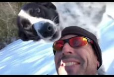 Guy Body-Sleds Down Huge Hill With Dog Then Sends His Wife Hysterical Video
