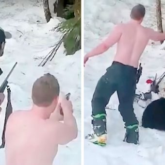 Father & Son Shoot Hibernating Bear Family, Lie That They Did It In Self Defense