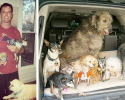 Man Devotes His Life To Adopting Old Dogs Who Can't Find Forever Homes