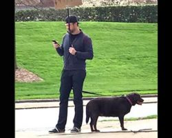 Man stands with sign for hours to find lost dog's owner