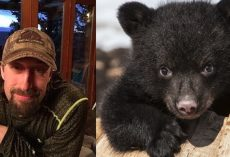 Father and son shoots a hibernating mama bear and her cubs in their den – then proudly pose for photos