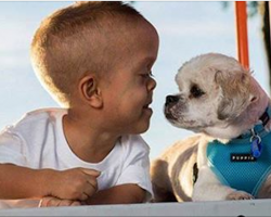 Boy is bullied because he 'looks' weird. Then he meets a dog who changes everything