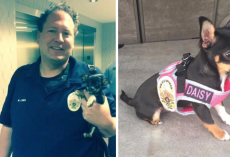 Puppy Found Abandoned At A Crime Scene Ends Up With The Best Job