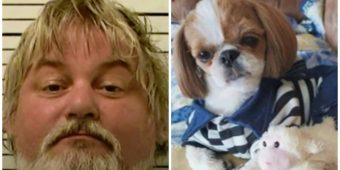 Groomer's husband charged with shooting and killing 4 dogs in her care