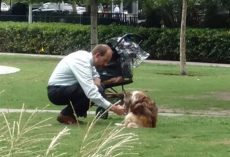 Man Takes Dog Out Of Stroller And Bends Down To Him Thinking That No One Is Watching Him