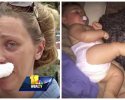 Mom Devastated When 8-Month-Baby and Puppy Caught In Fire, Firefighters Uncover