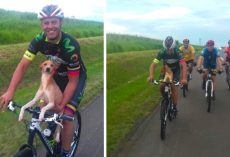 Cyclist Scoops Up Abandoned Puppy On Route, Brings Him Along For The Ride