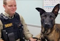 K9 Rejoins His Worried Handler After He Was Spooked By Fireworks & Went Missing