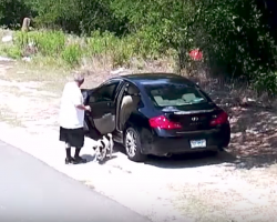 Man Abandons Dog On Side Of The Road — Now She Just Wants To Kiss Her New Owners