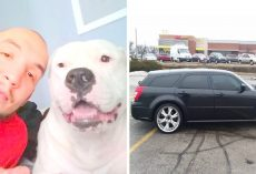 His Dog Needs Emergency Surgery, He's Put Up His Car For Sale Out Of Desperation