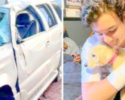 UPDATE: Puppy Lost During Car Crash Survives 13 Days In Desert, Reunited With Dad