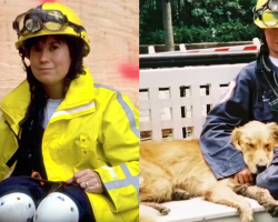 Remembering the Very Last 9/11 Hero Rescue Dog