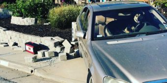 Impatient Dog Left In Car Alone Takes The Vehicle For A Spin