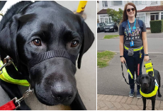 "22-Yr-Old Blind Woman Was Told To ""Take Her Guide Dog Off The F***ing Bus"""