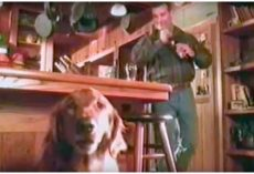 Budweiser Commercial Starring a Talking Dog Comically Explains Why He Gives Owner Beer