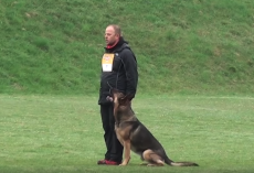 German Shepherd And Owner Displays Incredible Routine