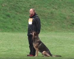 German Shepherd And Owner Displays Incredible Routine