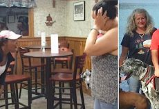 Angry Lady Screams At Veteran For Bringing Service Dog Into Restaurant And Video Sparked Outrage